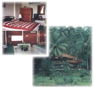 Accommodation at Matahari Bungalow