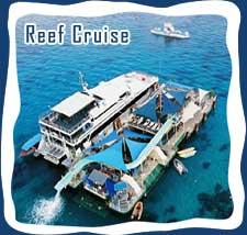 Bali Hai Cruises Tour Package Travel Agencies And Tour Operators